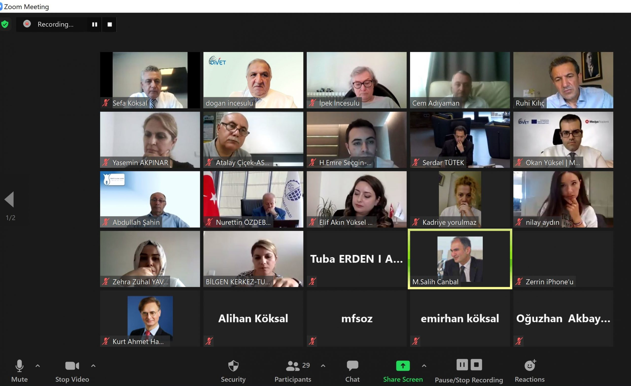Zoom screenshot featuring attendees to Divet project meeting